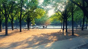 Jardin du Luxembourg Tennis